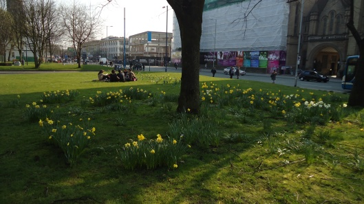 Spring in the University of Manchester